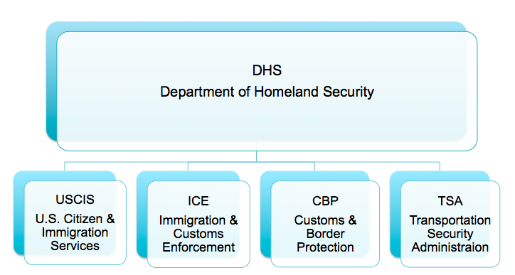 DHS Immigration chart